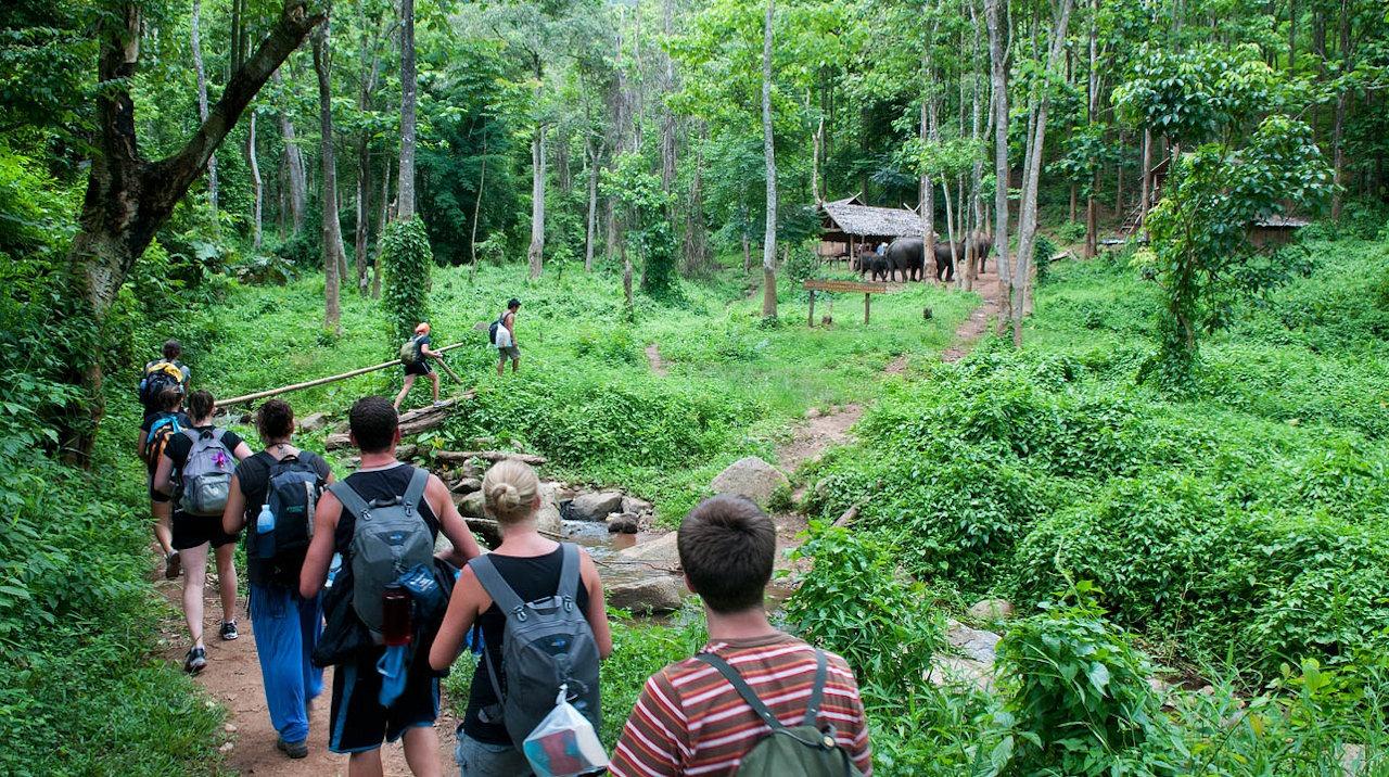 Trekking in Northern Thailand